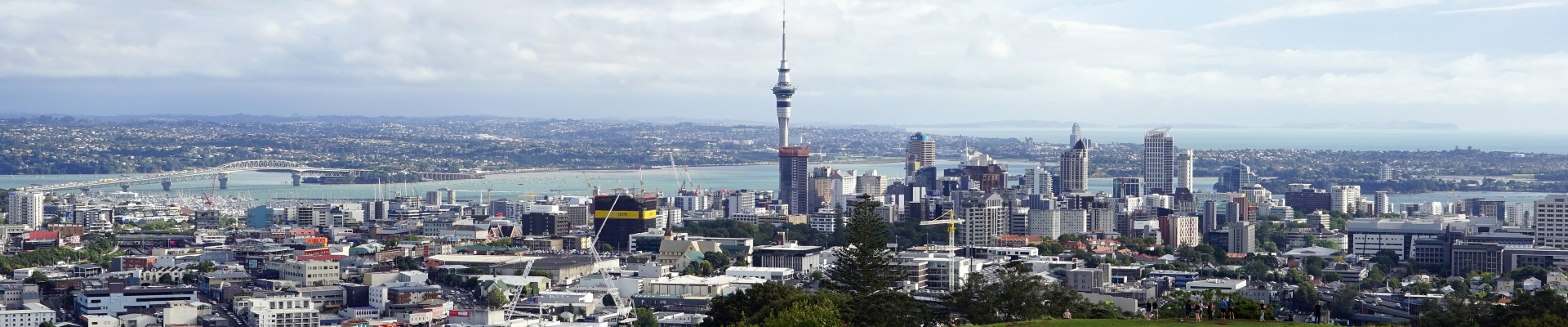 Discover...<br/>Auckland
